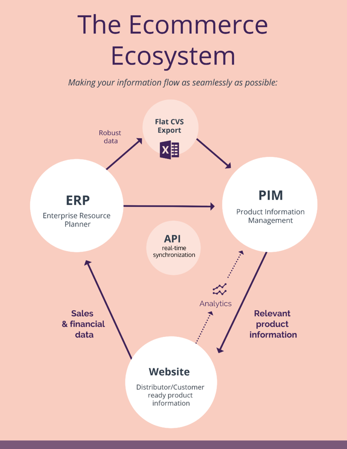 the Ecommerce ecosystem